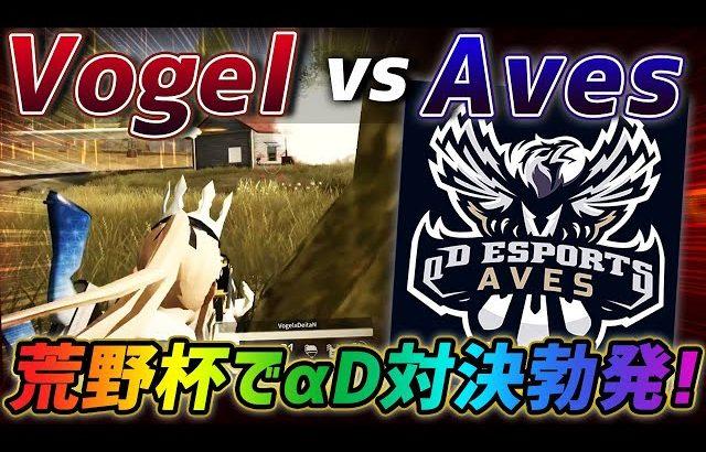 【荒野行動】αD直接対決勃発⁉️公式対決で起きたAves vs Vogelが激熱すぎたwww(ふぇいたん)