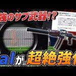 【荒野行動】公式が明言!!新たにValが大幅強化でサブ武器として最適なオススメ武器になるか!?(ふぇいたん)