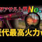 【荒野行動】新武器AK-14が実装!!過去最高のNo1火力が出る武器がやばすぎるwwww(ふぇいたん)